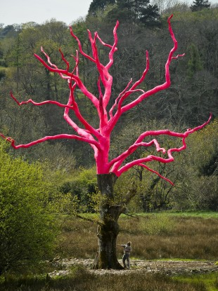 Artist Henry Bruce looks at his art project in the grounds of the Delamore Estate, Devon