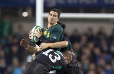 Springboks, Wallabies confirmed as Ireland's next November opposition
