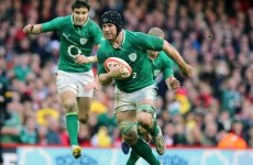 Sean O'Brien remains the most important player in Irish rugby