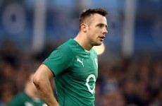 Bowe and Fitzgerald 'extremely close' but not close enough for Ireland