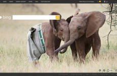 Bing responded to its elephant-penis homepage in the best possible way