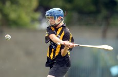 Kilkenny beat Wexford in Camogie League Division 1 semi-final